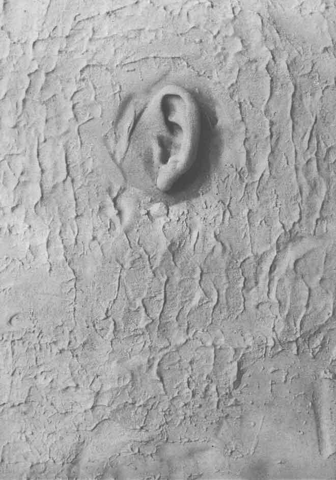 As Paredes têm Ouvidos