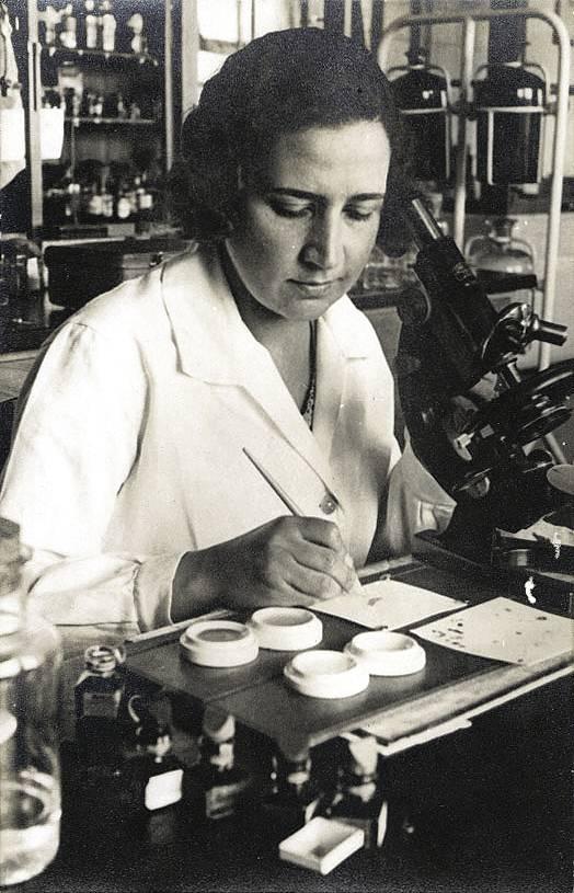 Mãe (Lucilia) com microscópio