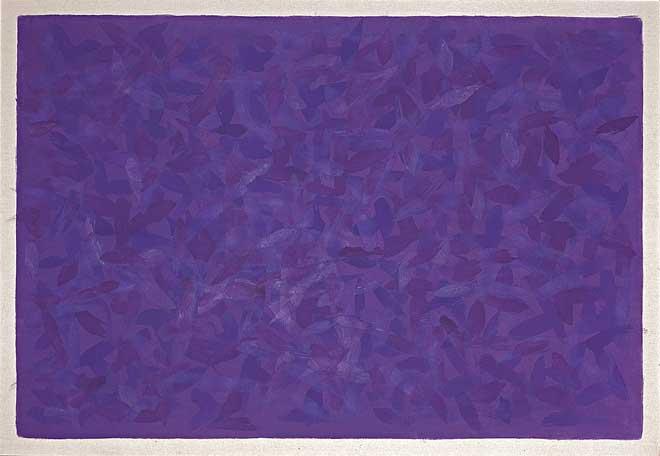 S. Campos de Cor - Violetas (2003)