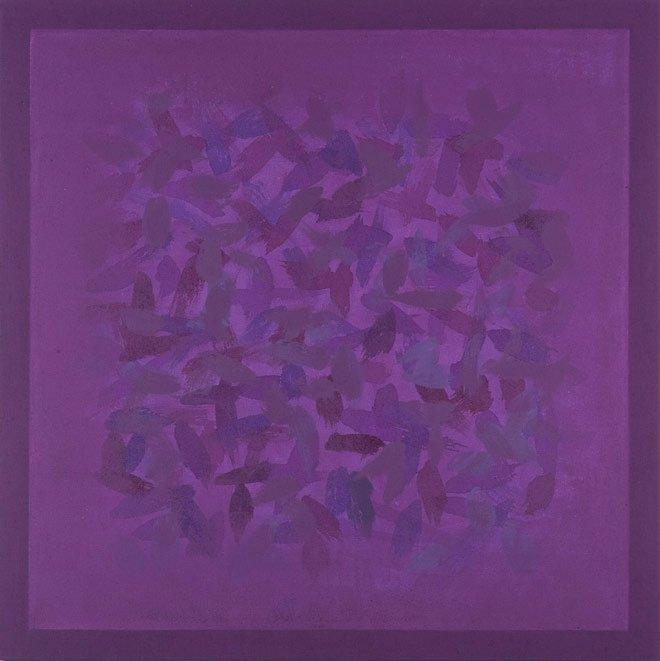 S. Campos de Cor - Violetas